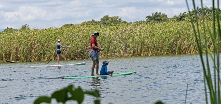 SUP paddle in La boca Cabarete
