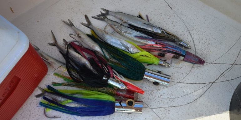 lure-selection