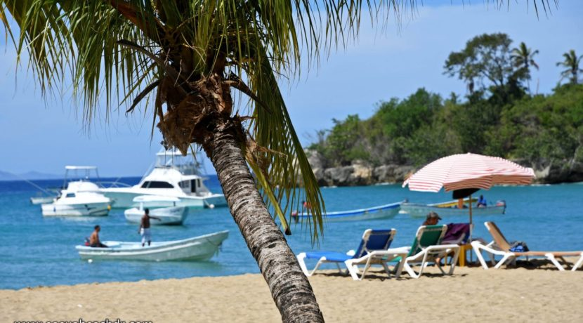 Sosua Beach Online Dominican Republic