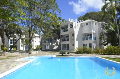 the studio is located in the center of Cabarete