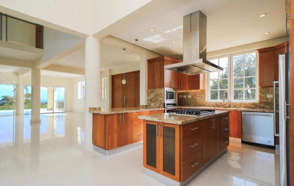 luxuryvilla250116